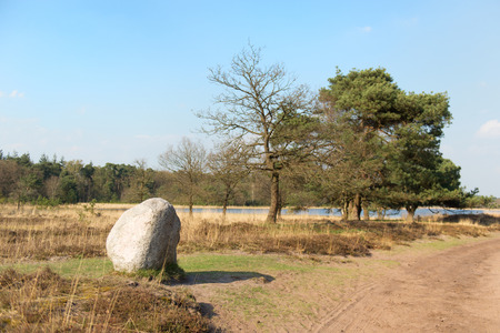 plassen: landscape in Holland at the Leersumse veld with big stone