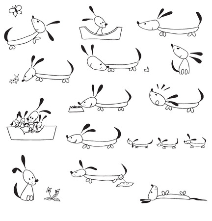 Hand drawn Dogs life cycle in simple illustrations isolated over white background