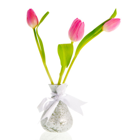 Several tulips in silver vase isolated over white background photo