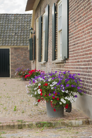 petunias: Detail dutch farmhouse with Petunias