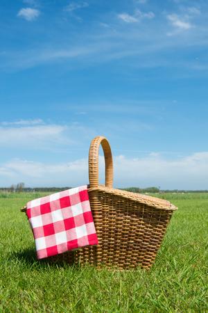 屋外の芝生でピクニック バスケット