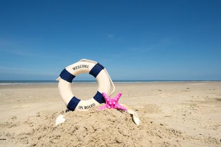 life buoy: Summer beach with life buoy and shell fish