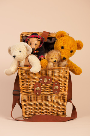 toy box: Stuffed hand made bears in toy box on beige background