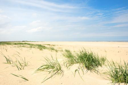 North sea beach at Dutch wadden island Terschelling