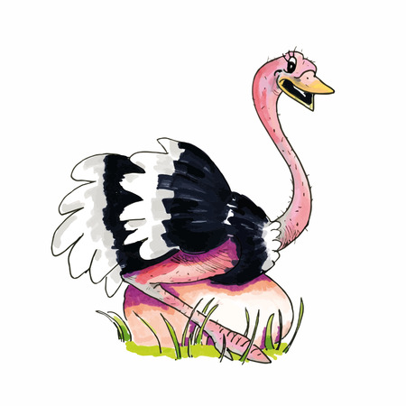 Cartoon of hand drawn Ostrich sitting on egg isolated over white background Vector