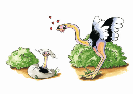 Cartoon of hand drawn Ostrich with young in egg isolated over white background Vector