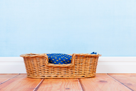 Empty basket at the floor for dog or cat Stock fotó