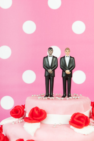 wedding decoration: Pink wedding cake with red roses and gay couple on top