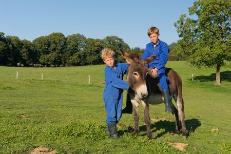 farm boys: Farm boys riding on their donkey