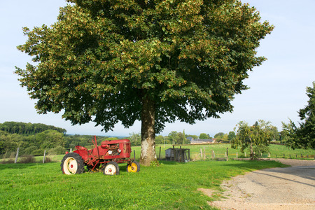 agriculture machinery: Old red tractor at the farm Stock Photo