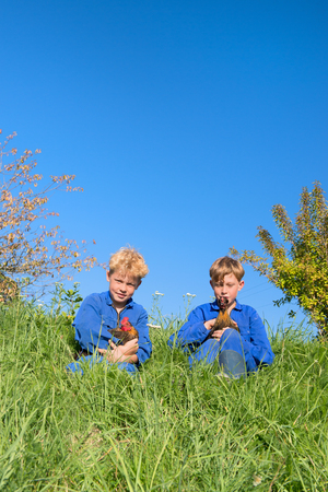 farm boys: Farm boys sitting in grass with chickens