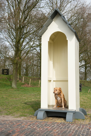 guard house: Beware of the dangerous funny dog Stock Photo