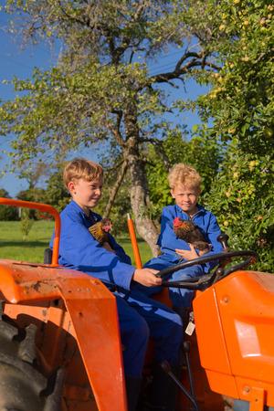 farm boys: Farm boys with chickens riding on orange tractor Stock Photo