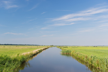 Typical Dutch landscape with pastures and water