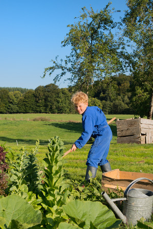 coverall: Farm boy works in the vegetable garden