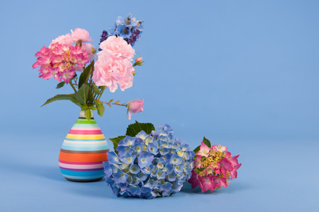 garden cornflowers: Hydrangeas pink and blue and other flowers in vase on colorful background