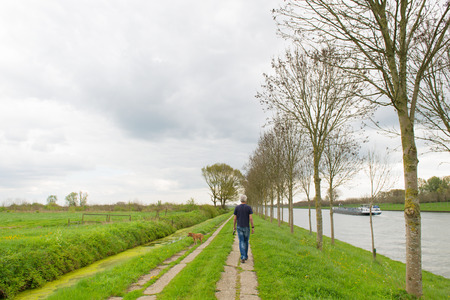 dutch typical: Man walking the dog in typical dutch landscape