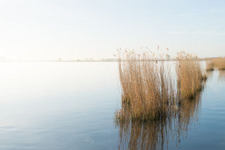 Landscape with Eemmeer in the Eempolder in the Netherlands Stock Photo