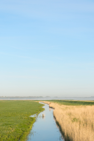 typical: Typical Dutch landscape in the polder