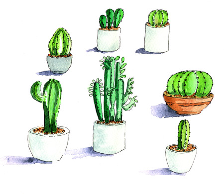 isolated over white: Handddrawn illustration of different cactuses isolated over white background Stock Photo