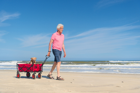 freetime: Senior man walking with dog in cart at the beach