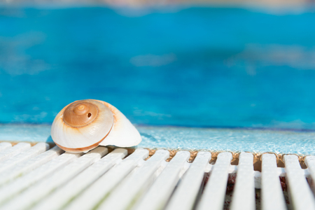 sports shell: Shell at outdoor swimming pool