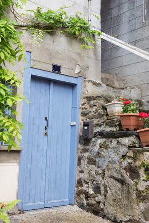 french doors: Blue French door with plants in pots
