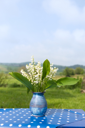 muguet: Lily of the valley in blue vase in France Stock Photo