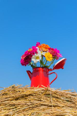 hayroll: Bouquet garden flowers on hay roll in summertime
