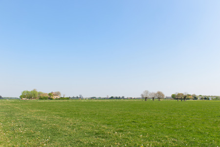 dutch typical: Typical Dutch flat landscape with meadows and horizon
