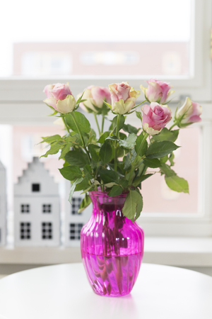 Colorful pink roses in interior