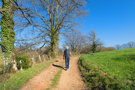french way: Man and dog walking in nature