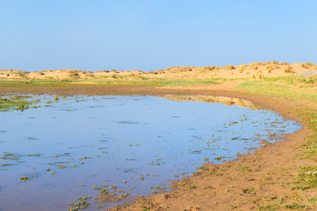 Swamp at the beach from the French Gironde Stock Photo