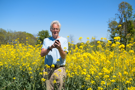 Senior man with mobile phone in yellow colza field photo