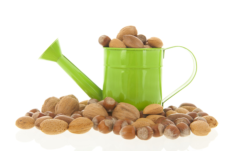 Watering can with assortment nuts isolated over white background