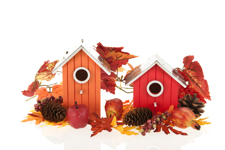 Nesting boxes with leaves and fruit