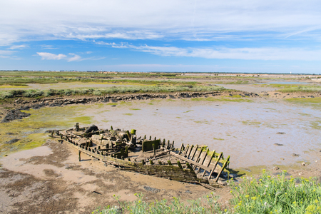 Old wooden boat carcass in bird sanctuary La Maison du Fier on island Ile de Re 版權商用圖片