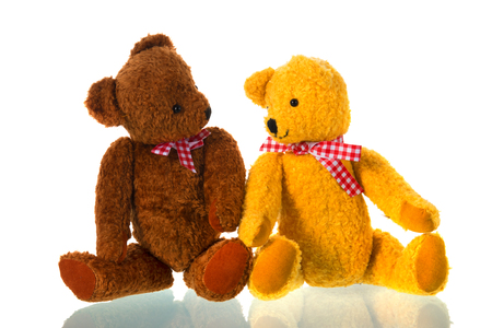 Stuffed bears toys isolated over white background