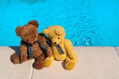 Two bears on vacation near swimming pool Banco de Imagens