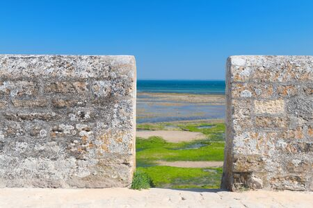 Northern coast ebb ty Ile de Re behind the wall