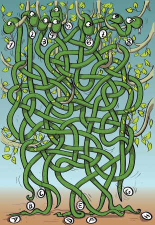 knotted: Eight Snakes Maze Game Illustration