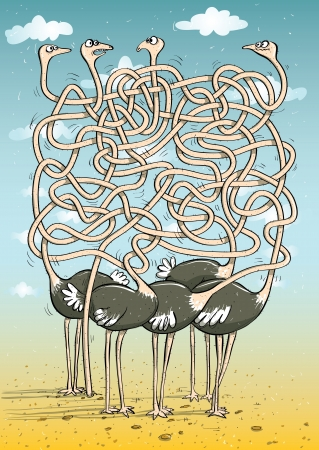 Five Ostriches : Maze Game Task: find which ostrich has head buried in the sand.  Illustration