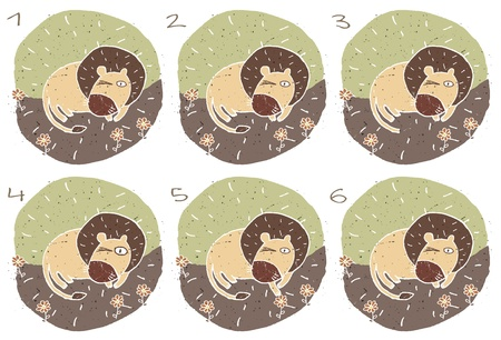 alike: Lion Puzzle     Task  Find two images that are alike   match pairs ; Answer  No  1 and 6