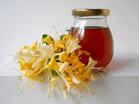Honey in a glass and honeysuckle flower on a white background. Kitchen decoration. photo