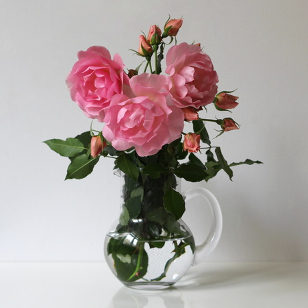 Pink roses in a glass vase on a white background. Floral decoration. Still life with roses. photo