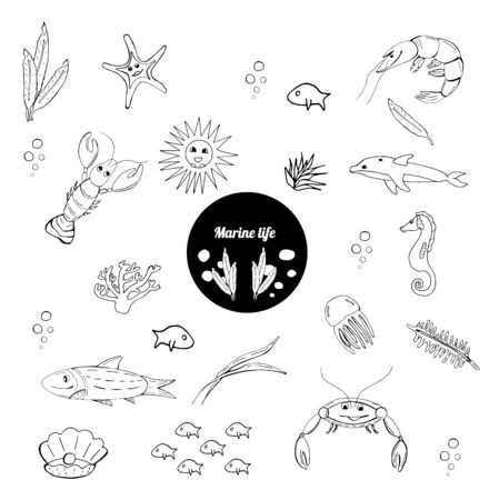 Sea life creatures collection. Vector ocean creatures isolated on white background. Coloring book page, stickers. Art element for design. 일러스트