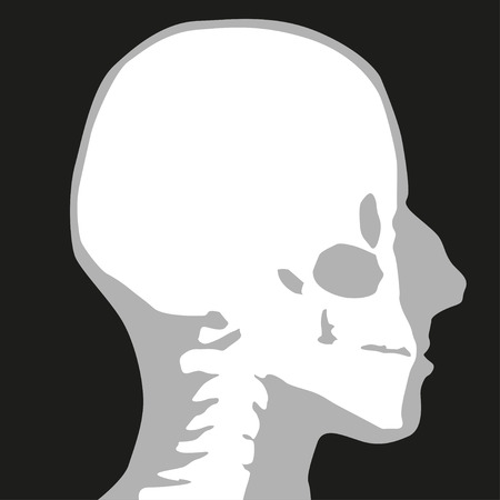 radiography: X-ray. Head. Symbol. Vector illustration. Illustration