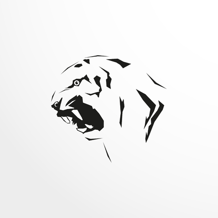 The head of a tiger black and white image. Illustration