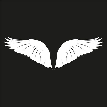Wings of a bird. White vector illustration on black background.
