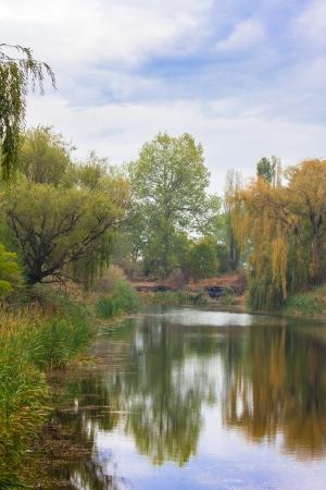danube delta: small forest lake near Sofia